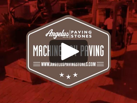 Machine Lay Video